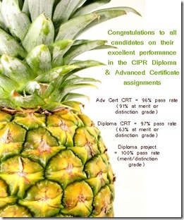 pineapple results copy