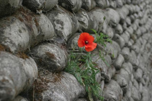 Somme 2_0